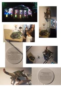 Nuit au Museumd'histoire naturelle de la Réunion - Exposition de faune préhistorique