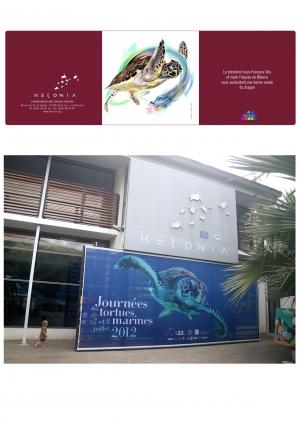 """Carte de voeux Nouvel an chinois et affiche """"Journée de la tortue"""" Kélonia"""